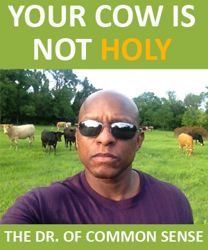 Your Cow Is Not Holy!