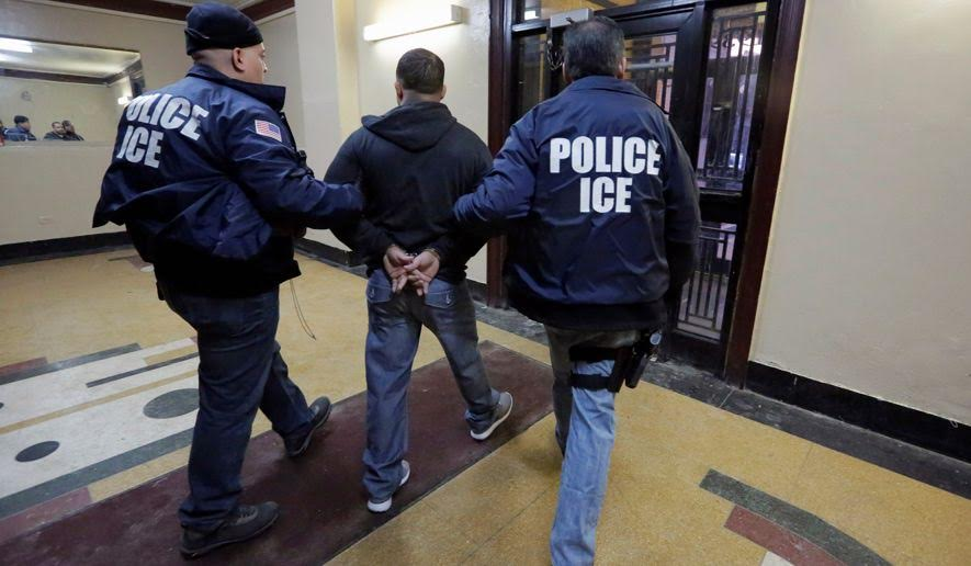 Common Sense Is Back! Under Trump, ICE Agents Actually Feel Free To Do Their Jobs