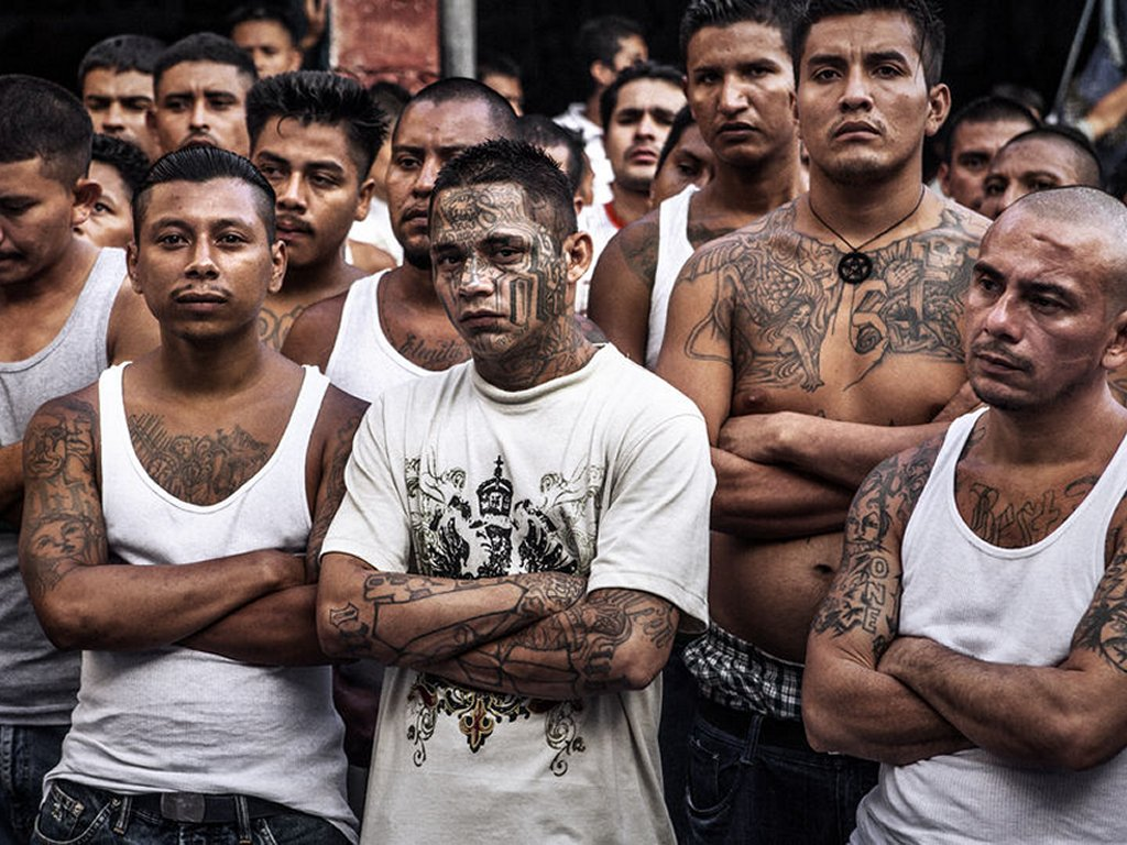20,000 MS-13 Members Responsible for Drugs, Murder, and Rape Across America!