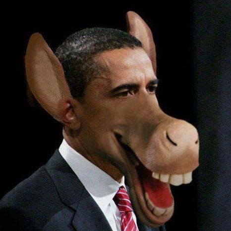 Image result for obama as a jackass pic