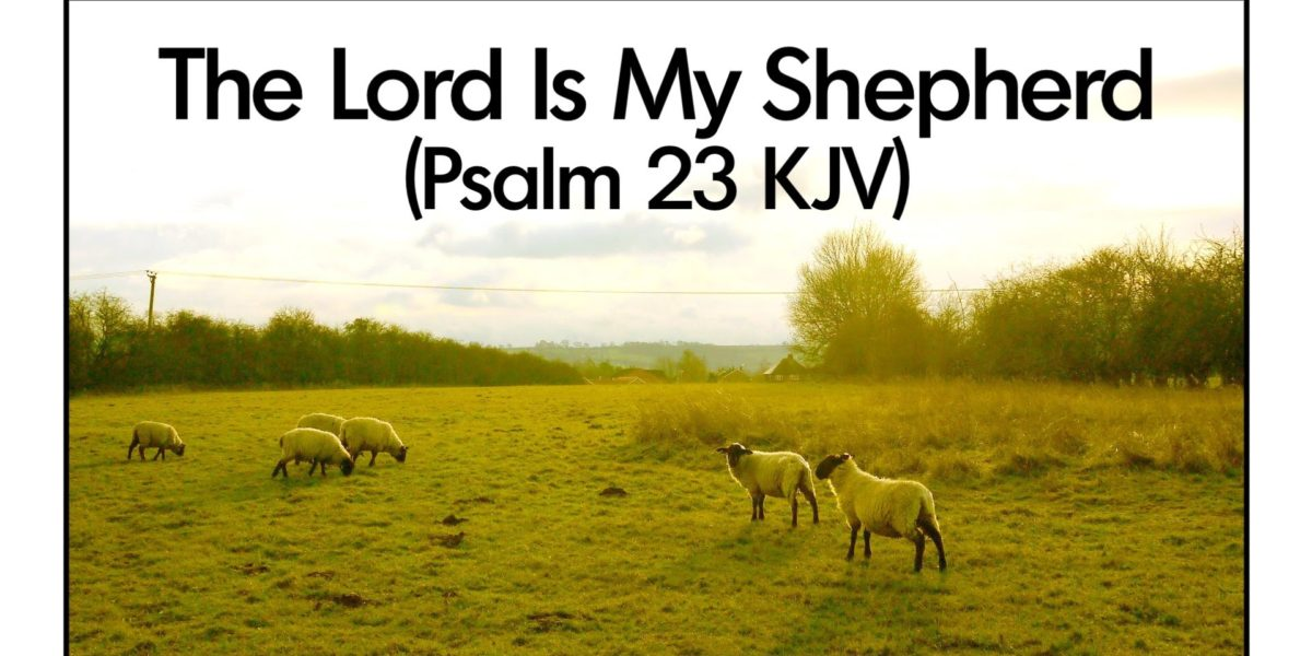 The Lord Is My Shepherd And I Don't Have To Want
