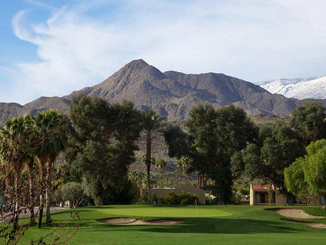 WTF? Palm Springs Will Remove 'Racist Trees' Separating Black Neighborhood from Golf Course