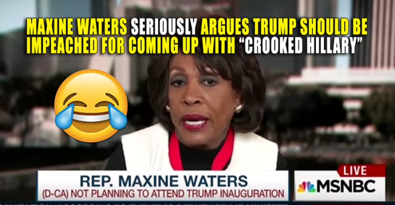 Haha: Maxine Waters Will Give Her Own  State of the Union After Trump