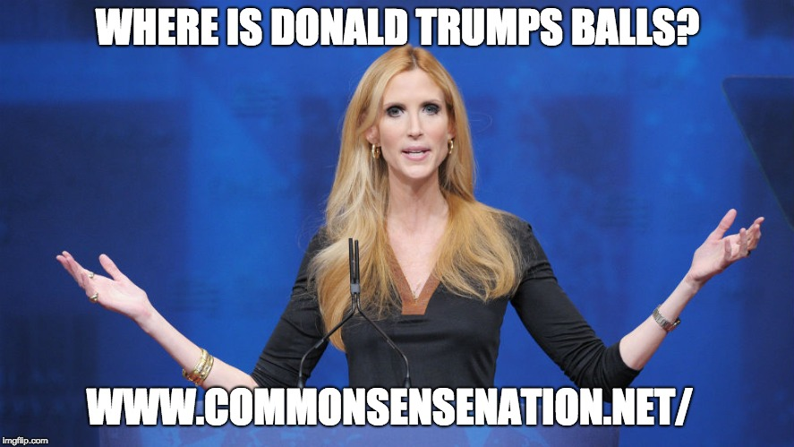 Ann Coulter Says Trump Is The Biggest Wimp Ever Ending Over Shutdown Deal