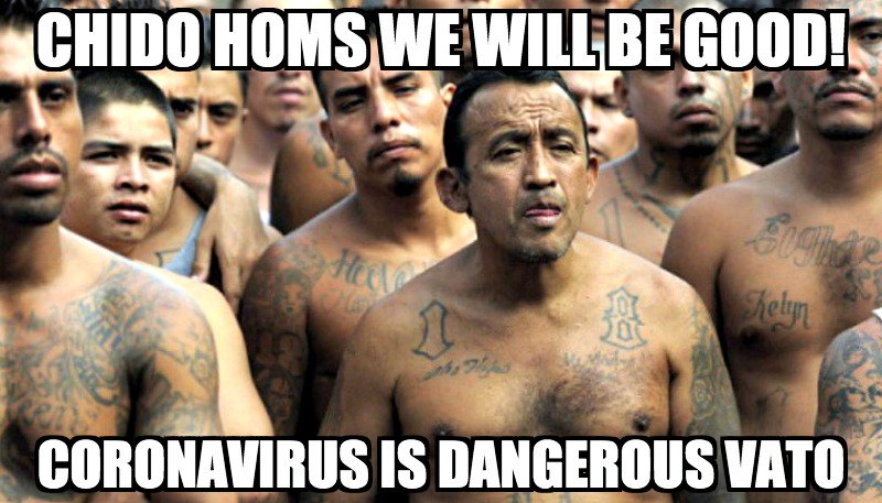 UNREAL! Illegal Immigrants Sue To Be Freed From ICE Custody During Coronavirus Crisis